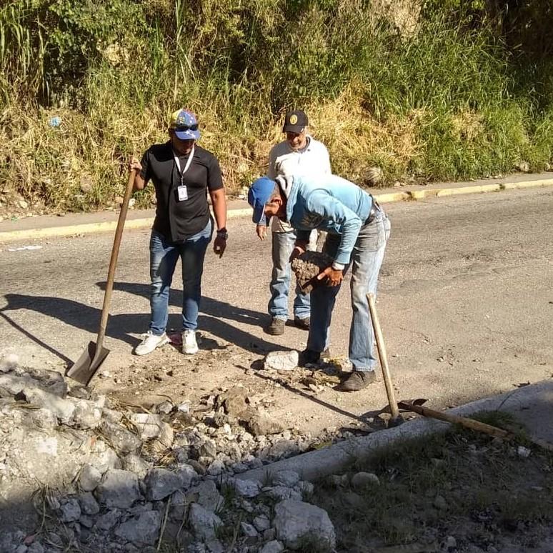 Diario Frontera, Frontera Digital,  ALCALDÍA DE MÉRIDA, Regionales, ,Alcaldía de Mérida trabaja en el ornato de la ciudad