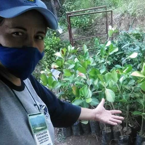 Diario Frontera, Frontera Digital,  IMDERURAL, LAGUNA DE URAO, Regionales, ,Imderural continúa reforestando las afluentes de la Laguna de Urao