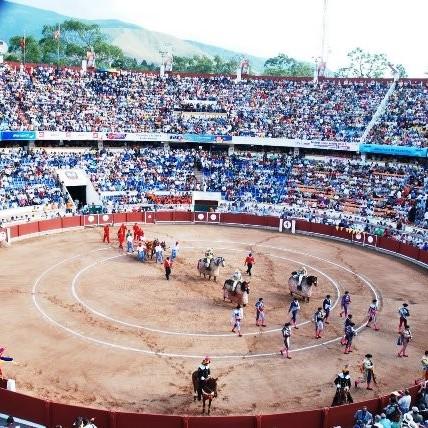 Diario Frontera, Frontera Digital,  TOREO EN VENEZUELA, Regionales, ,El año del coronavirus se carga también el toreo en Venezuela