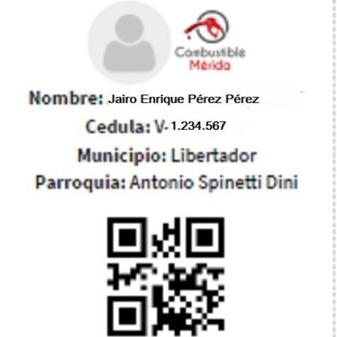 Diario Frontera, Frontera Digital,  CARNET, Regionales, ,Merideños podrán  descargar el carnet QR para surtir combustible