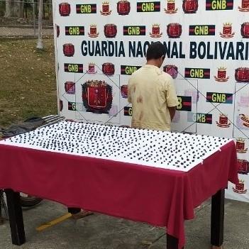 Diario Frontera, Frontera Digital,  MICROTRÁFICO, Sucesos, ,GNB encana a microtraficantes con 516 porciones de marihuana