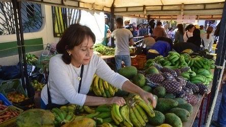 http://fronteradigital.com.ve/Productores merideños recibirán apoyo  por parte de la gobernación del estado