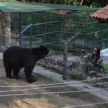 Diario Frontera, Frontera Digital,  CHORROS DE MILLA, Regionales, ,Animales del parque zoológico reciben atención de calidad