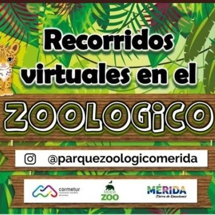 Diario Frontera, Frontera Digital,  ZOOLÓGICO DE MÉRIDA, VISITAS VIRTUALES, CORMETUR, Regionales, ,Merideños pueden hacer recorridos virtuales por el Zoológico de Mérida
