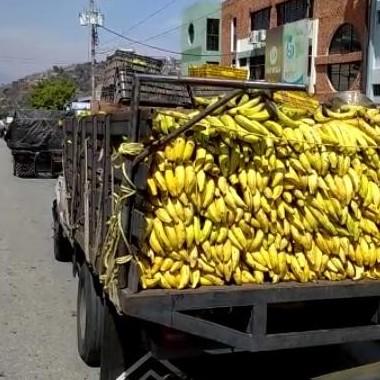 Diario Frontera, Frontera Digital,  ODDI MÉRIDA, Regionales, ,Más de 2.500 empresas y productores atendidos en Mérida con combustible