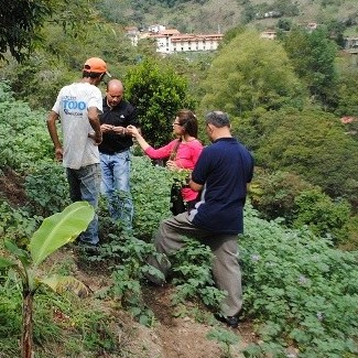 Diario Frontera, Frontera Digital,  SEMILLA DE PAPA, Tecnología, ,Siembra de semillas de papa avanza en Santa Rosa con apoyo del Cida