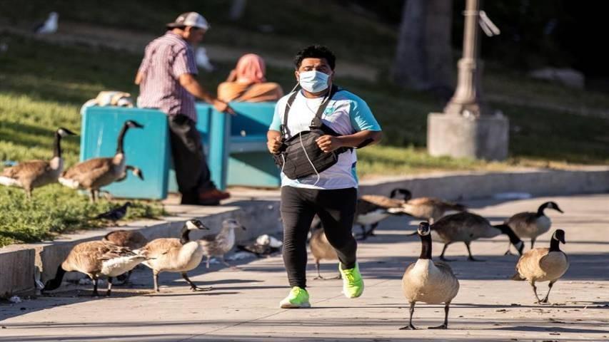Diario Frontera, Frontera Digital,  OMS, Salud, ,OMS: Suramérica se convierte en epicentro del covid-19