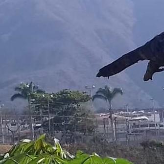 Diario Frontera, Frontera Digital,  ODH - ULA, Regionales, ,ODH-ULA solicita visita de la Defensoría del Pueblo  al Centro Penitenciario de la Región Andina
