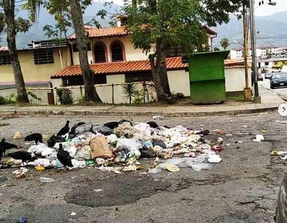 Diario Frontera, Frontera Digital,  LOS SAUZALES, Regionales, ,Alcides Monsalve denuncia comportamiento anárquico en algunos vecinos de Los Sauzales