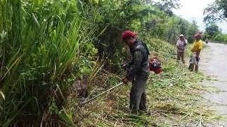 http://fronteradigital.com.ve/PERSONAL DE LA LINEA DE TRANSPORTE LA PALMITA  REALIZÓ LIMPIEZA DEL ÁREA VERDE DE LA VIA