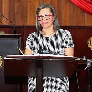 Diario Frontera, Frontera Digital,  CNE, Politica, ,Indira Alfonzo: Elecciones parlamentarias del 6-D  contarán con el acompañamiento internacional