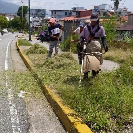 Diario Frontera, Frontera Digital,  ALCALDÍA DE MÉRIDA, Regionales, ,Ayuntamiento Capitalino intensifica trabajos  de recuperación de avenida Andrés Bello