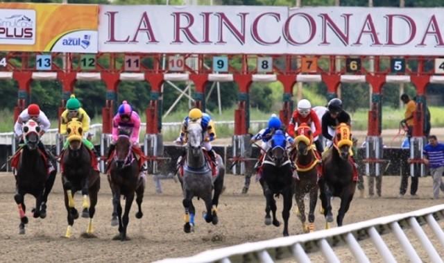 Diario Frontera, Frontera Digital,  LA RINCONADA, Nacionales, ,MP imputó a dos ciudadanos por  manipular resultados en carrera del hipódromo La Rinconada