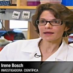 Diario Frontera, Frontera Digital,  IRENE BOSCH, Tecnología, ,Irene Bosch descubre en Venezuela el germen del test rápido para coronavirus
