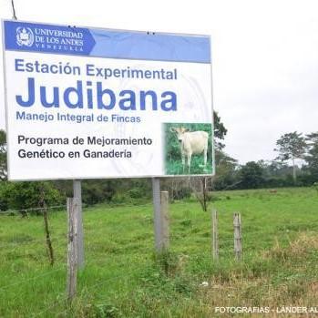 Diario Frontera, Frontera Digital,  FINCA JUDIBANA, Panamericana, ,*Protección urgente de la Finca Judibana logra consenso en Mérida