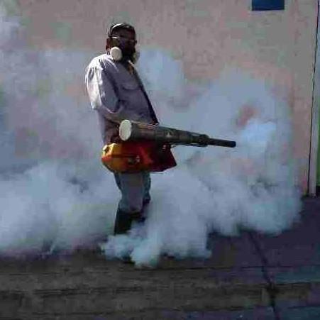 Diario Frontera, Frontera Digital,  SALUD AMBIENTAL, Salud, ,Salud Ambiental ejecutará  en el estado Mérida plan contra el dengue