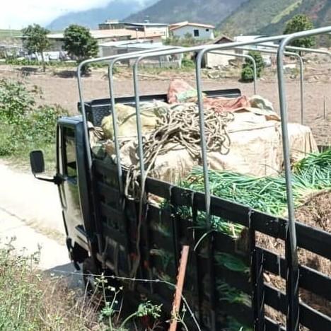 Diario Frontera, Frontera Digital,  GASOIL, PRODUCTORES ANDINOS, Regionales, ,Escasez de gasoil pone en riesgo cosecha  de productores agropecuarios andinos