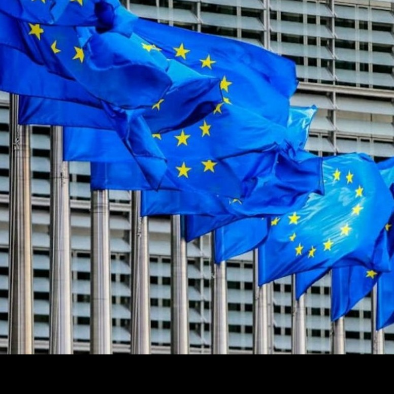 Frontera Digital, Diario Frontera, UE podría retirar su misión de observación  para el 21-N si cambian las condiciones