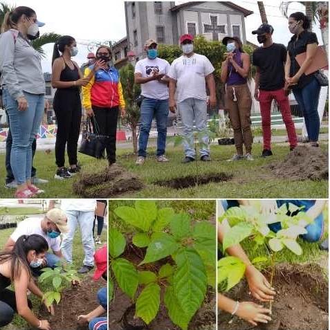 Diario Frontera, Frontera Digital,  Pensamiento ecologista, Regionales, ,Pensamiento ecologista de Hugo Chávez recuerdan merideños con siembra de árboles