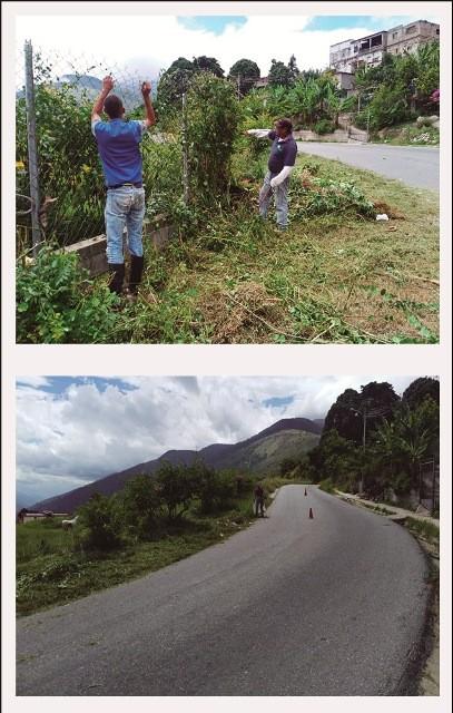 Diario Frontera, Frontera Digital,  ALCALDÍA DE TOVAR, Mocoties, ,Alcaldía de Tovar realizó limpieza de la vía que conduce a La Playa