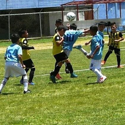 Diario Frontera, Frontera Digital,  Mini Champions Kids'2021, Deportes, ,Enlace Sport organizará competencias en Caracas Mérida y Cúcuta