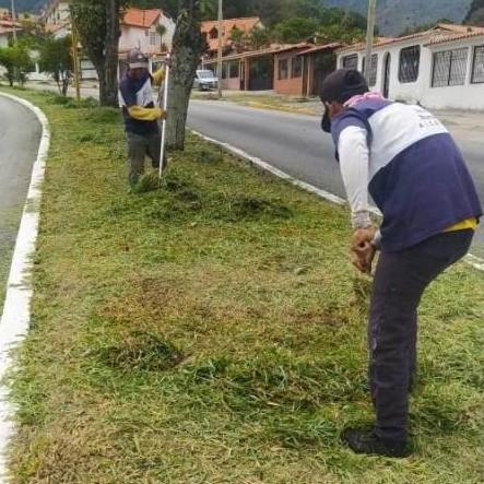 Diario Frontera, Frontera Digital,  ALCALDÌA DE MÉRIDA, Regionales, ,Alcaldía de Mérida inició limpieza  y desmalezamiento de avenida Las Américas